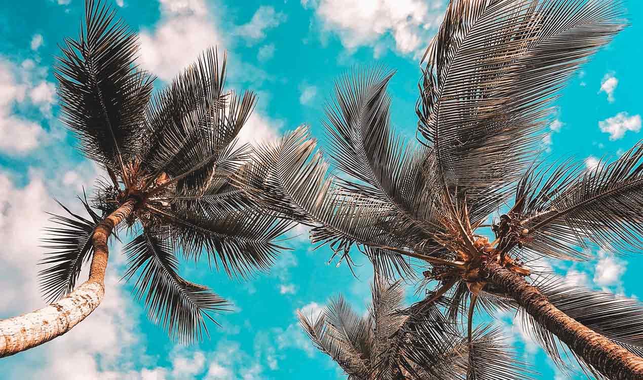 generation-x-early-retirement-overseas-palms